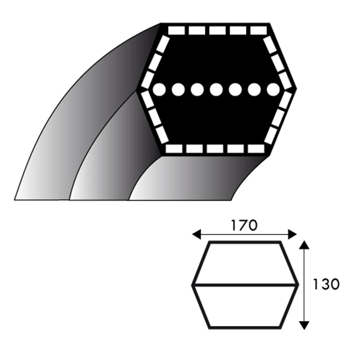 35062012//0 Longueur ext/érieure: 2550 mm Section: 13x8 mm 102 /& 122 cm A98 : Courroie lisse trap/ézo/ïdale pour Tondeuses autoport/ées CASTELGARDEN Mod/èles 92 N/° origine: 35062011//0
