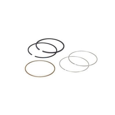 Segments Briggs & Stratton 795690 - 795132 - 790909